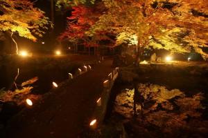 北畠神社ライトアップ
