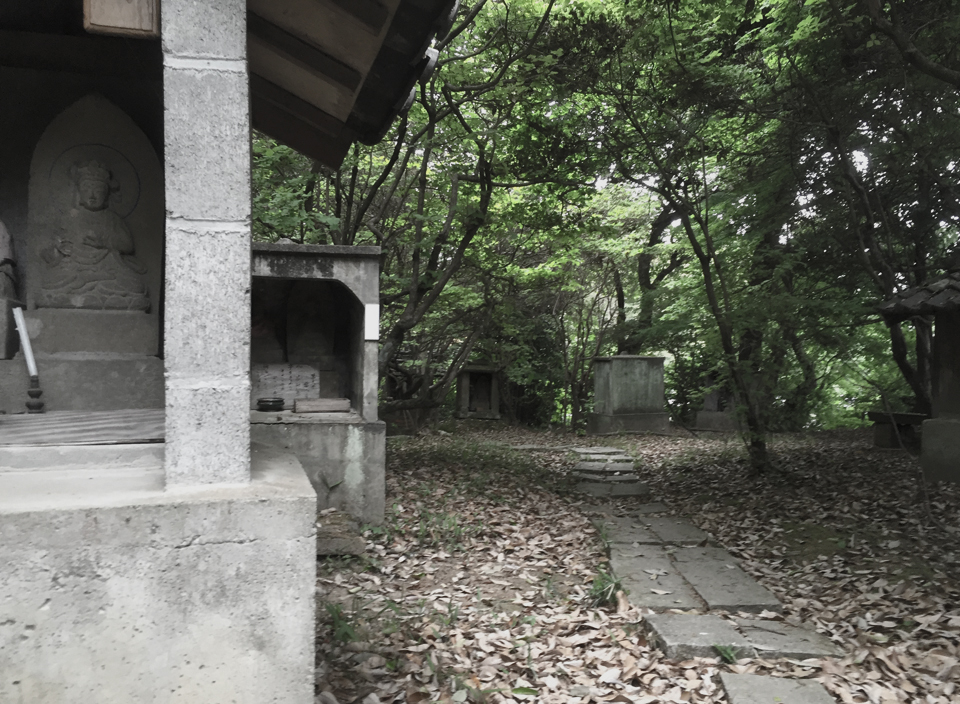 写真 2016-05-03 17 02 42