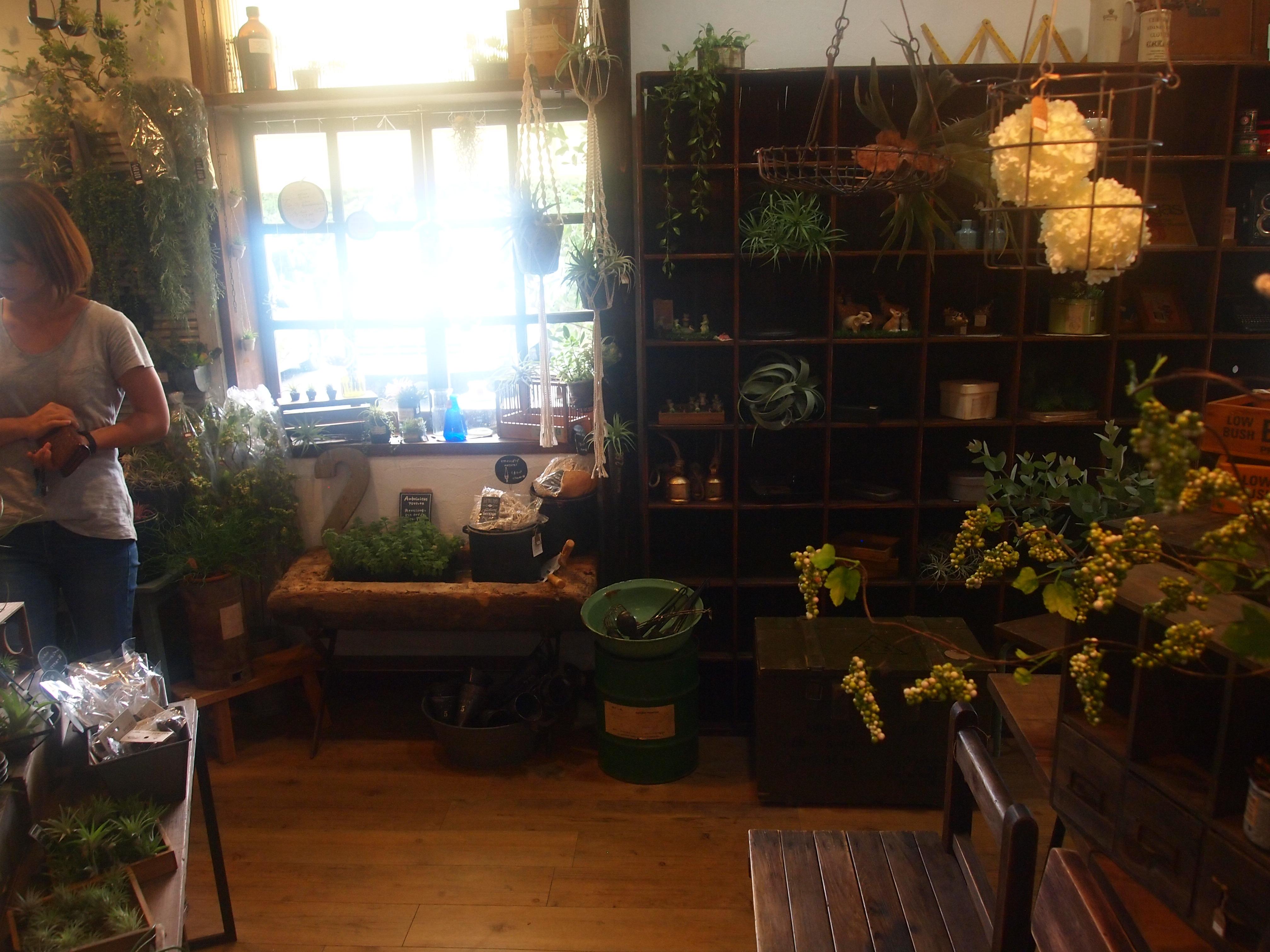 やわらかい陽が差し込む店内は、自然とリラックスできる雰囲気。
