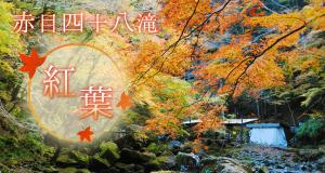 名張の観光スポット 紅葉の赤目四十八滝