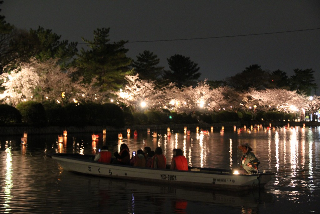 5 夜桜舟めぐり