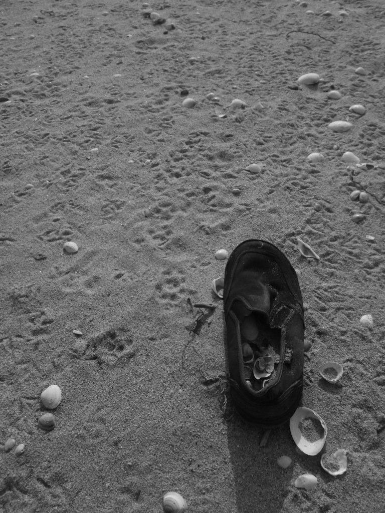 忘れもの。海にきた子どもが、楽しすぎて忘れて帰ってしまったのかな。そんな想像をすることも楽しい。とお話しする篁さん。©YUKARI TAKAMURA