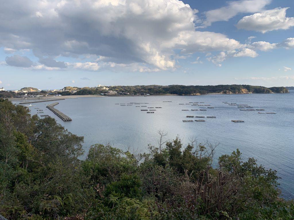 松村 畔蛸の海2