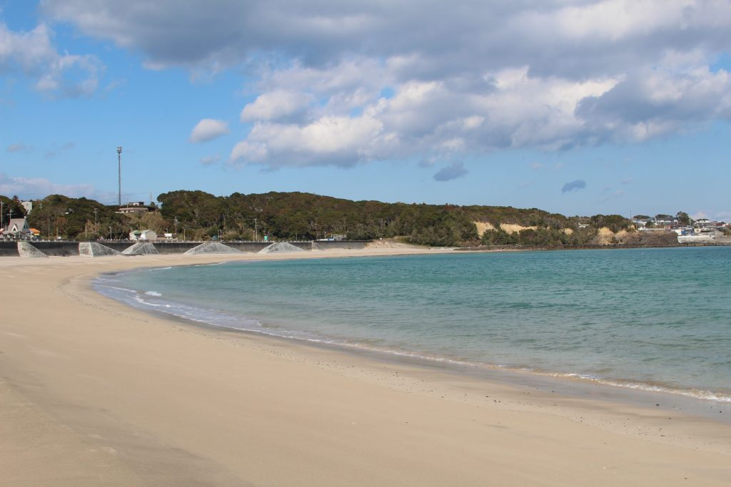 カネウフーズ いちご浜の様子