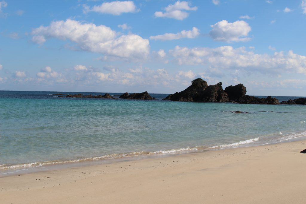 カネウフーズ いちご浜の様子2