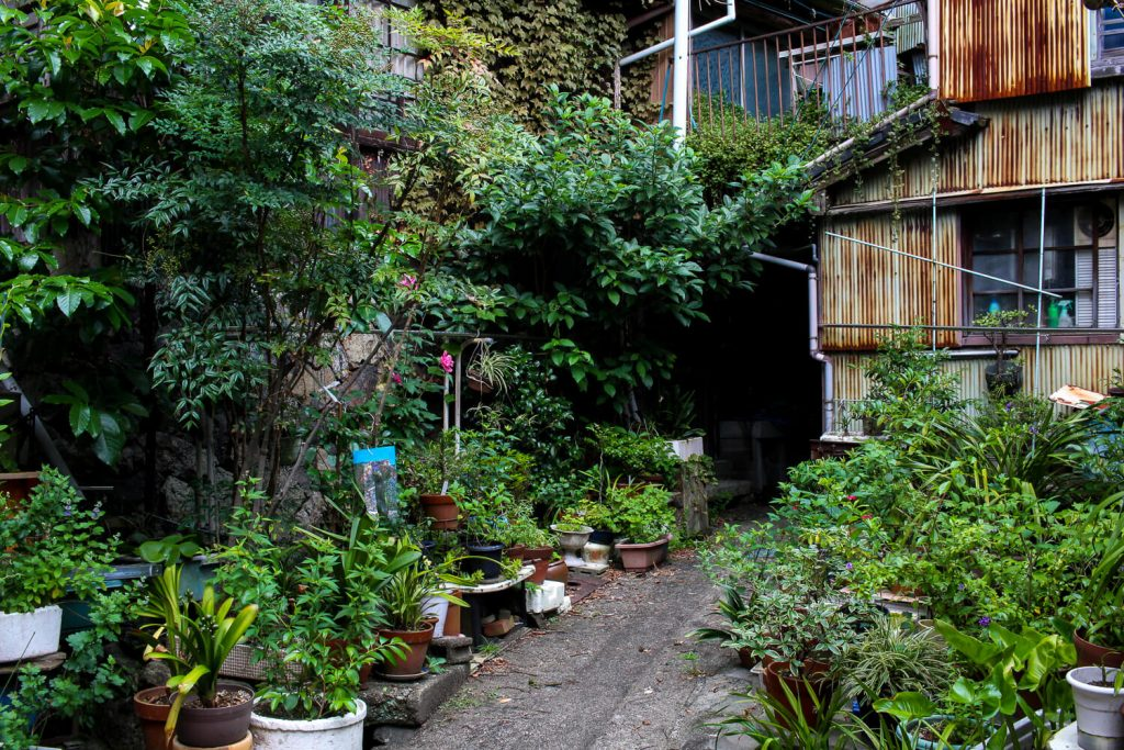 鳥羽中之郷まち歩き 4連屋根の建物裏 秘密の抜け道3