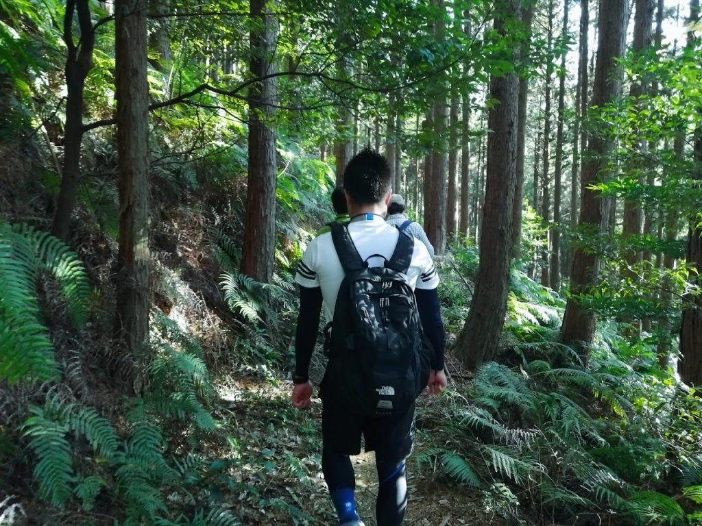 平坦な道で、先ほどと違いものすごく歩きやすい。