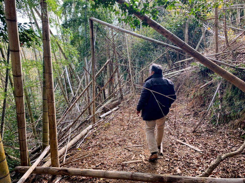 鳥羽市藤野郷で暮らす杉田さんとまち歩き 赤土山道6