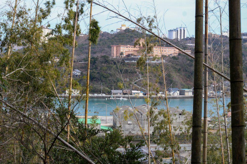 鳥羽市藤野郷で暮らす杉田さんとまち歩き 赤土山竹やぶからの風景