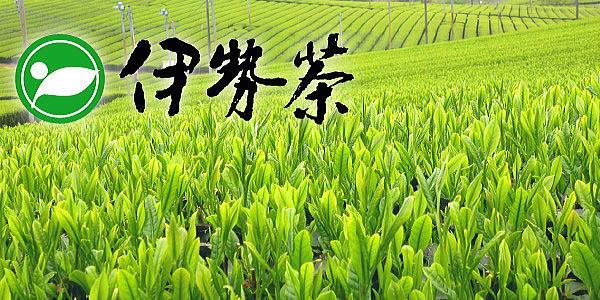 伊勢茶_三重県茶業会議所